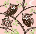 Owls by Thorina Rose
